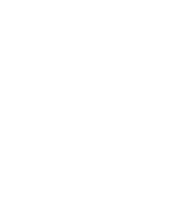 Christian International Español
